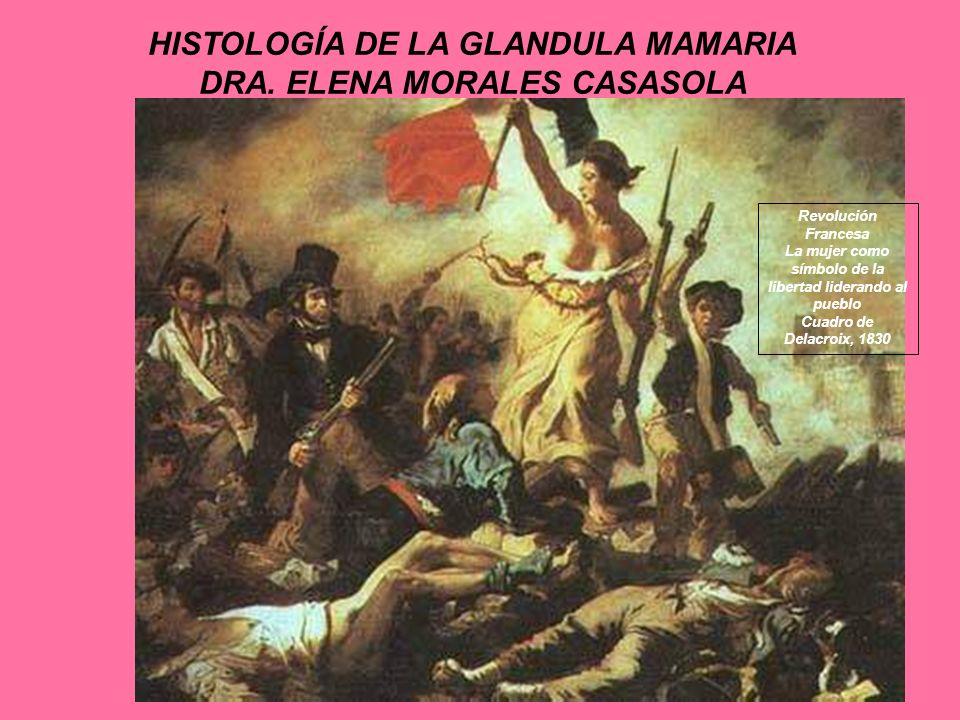 HISTOLOGÍA DE LA GLANDULA MAMARIA DRA. ELENA MORALES CASASOLA