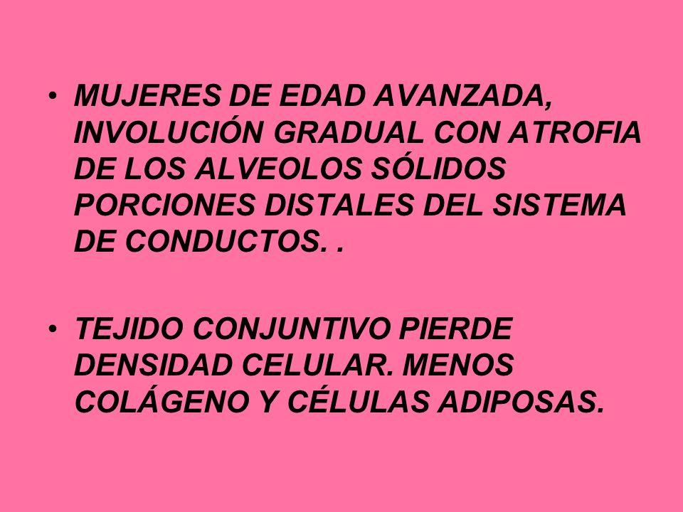 MUJERES DE EDAD AVANZADA, INVOLUCIÓN GRADUAL CON ATROFIA DE LOS ALVEOLOS SÓLIDOS PORCIONES DISTALES DEL SISTEMA DE CONDUCTOS. .
