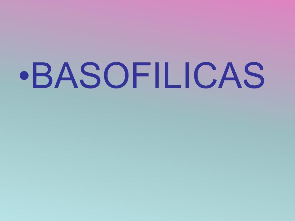 BASOFILICAS