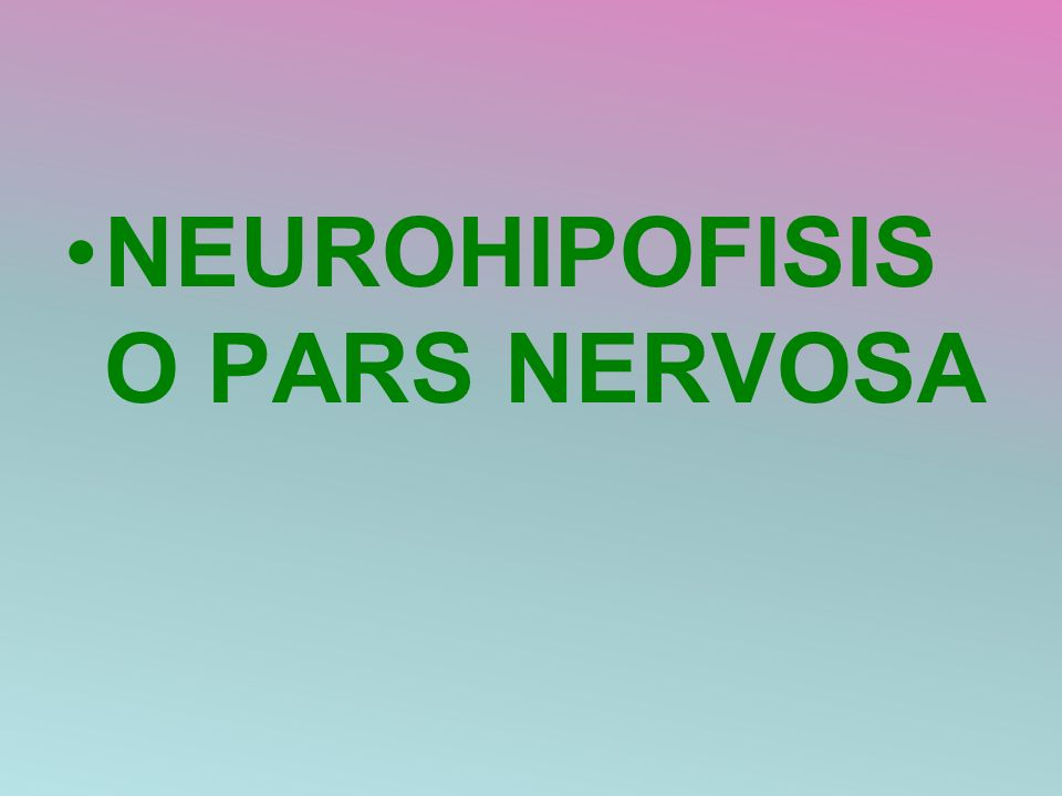 NEUROHIPOFISIS O PARS NERVOSA