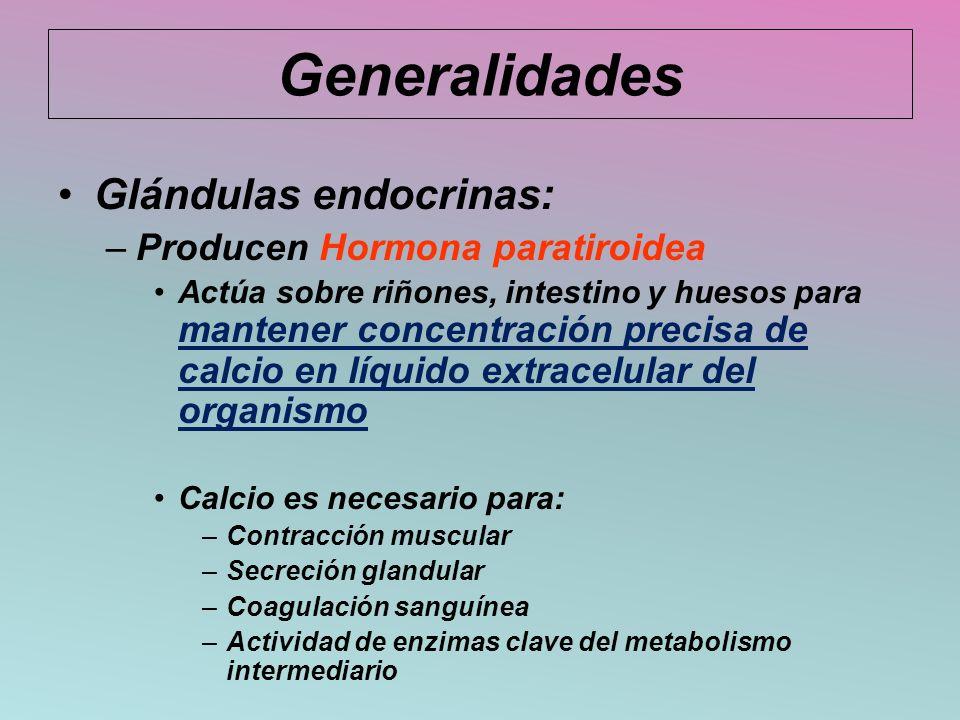 Generalidades Glándulas endocrinas: Producen Hormona paratiroidea