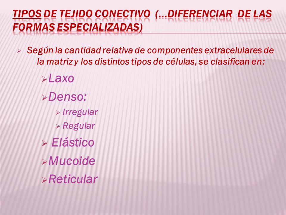 Laxo Denso: Elástico Mucoide Reticular
