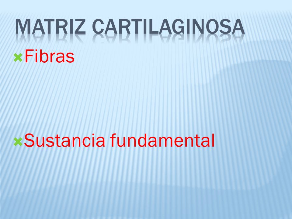 Matriz cartilaginosa Fibras Sustancia fundamental