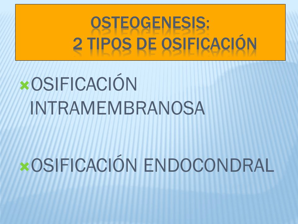 OSTEOGENESIS: 2 TIPOS DE OSIFICACIÓN