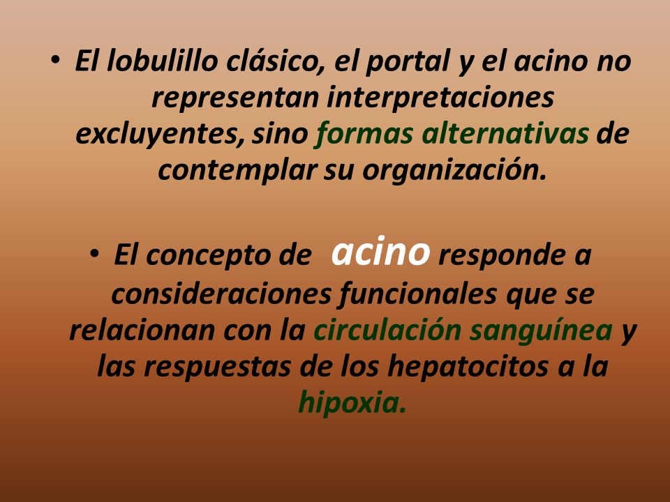 El lobulillo clásico, el portal y el acino no representan interpretaciones excluyentes, sino formas alternativas de contemplar su organización.