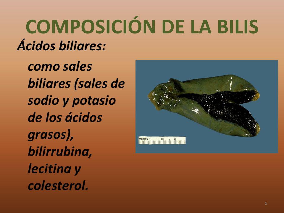 COMPOSICIÓN DE LA BILIS