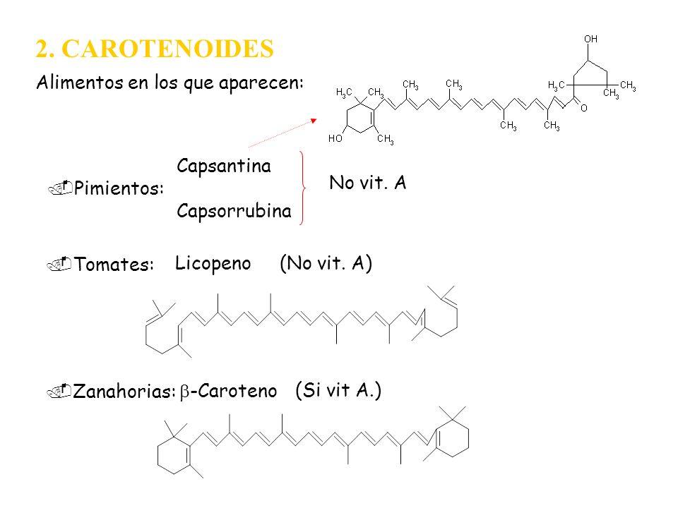 2. CAROTENOIDES Alimentos en los que aparecen: Capsantina No vit. A