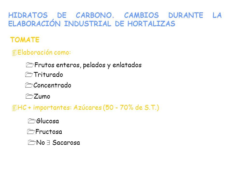 HIDRATOS DE CARBONO. CAMBIOS DURANTE LA ELABORACIÓN INDUSTRIAL DE HORTALIZAS