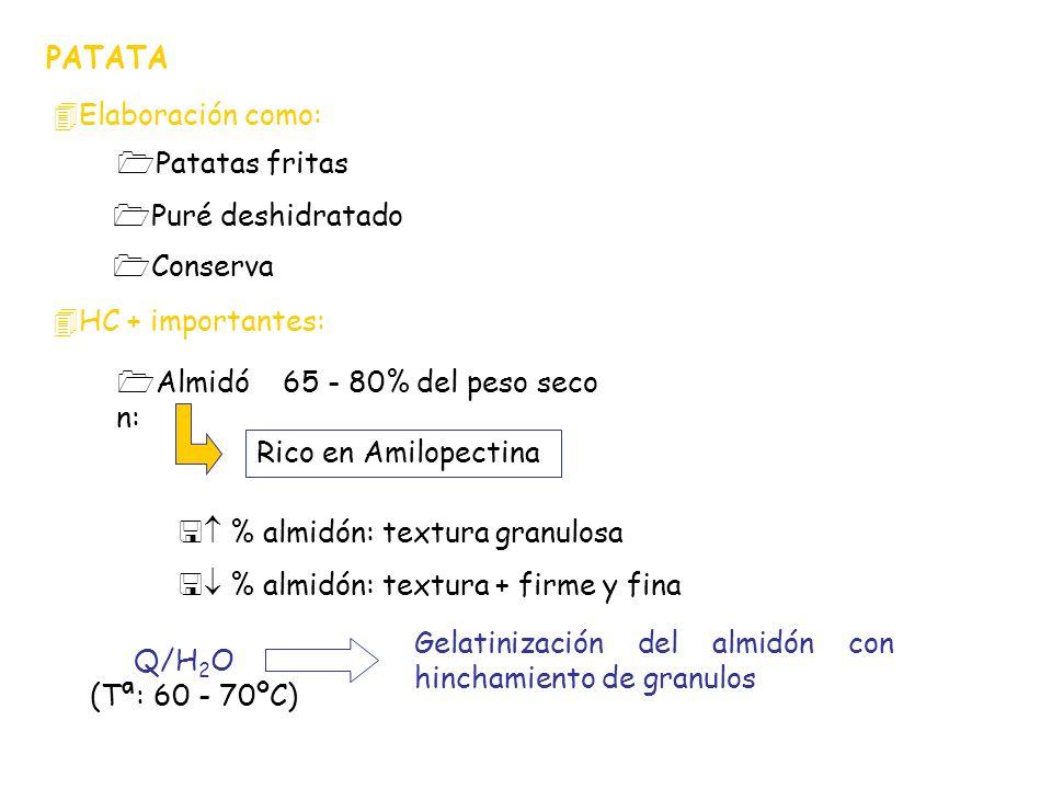 PATATAElaboración como: Patatas fritas. Puré deshidratado. Conserva. HC + importantes: Almidón: 65 - 80% del peso seco.