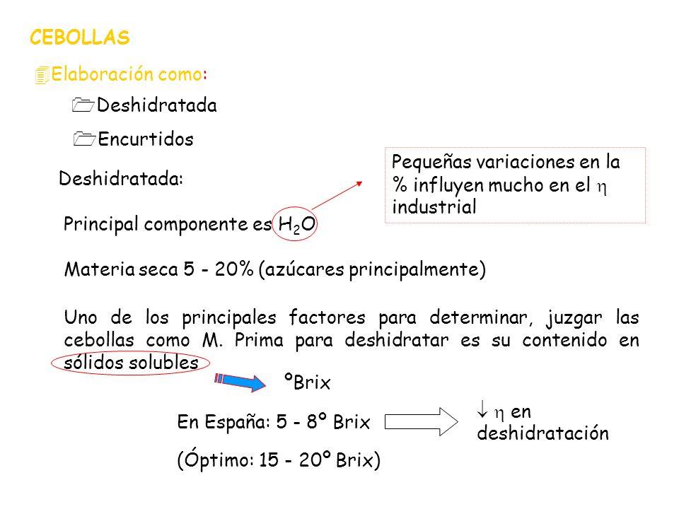 CEBOLLAS Elaboración como: Deshidratada. Encurtidos. Pequeñas variaciones en la % influyen mucho en el  industrial.