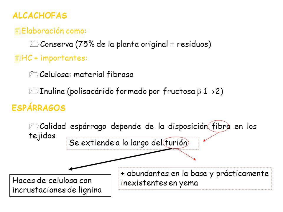 ALCACHOFAS Elaboración como: Conserva (75% de la planta original  residuos) HC + importantes: Celulosa: material fibroso.