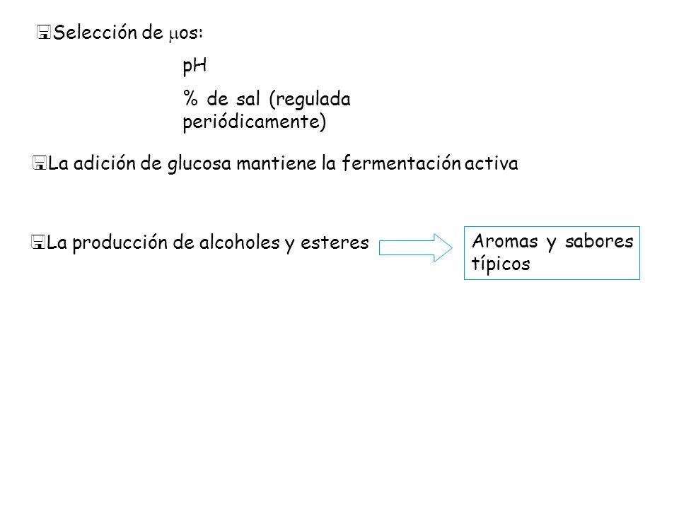 Selección de os:pH. % de sal (regulada periódicamente) La adición de glucosa mantiene la fermentación activa.