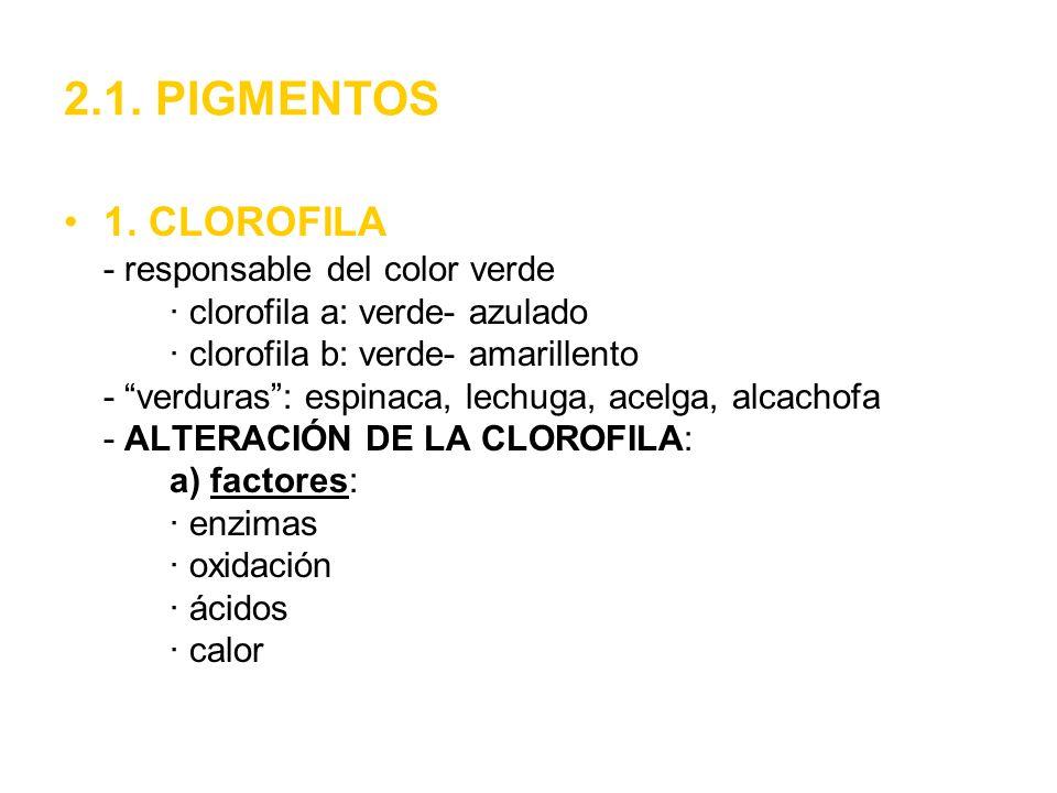 2.1. PIGMENTOS