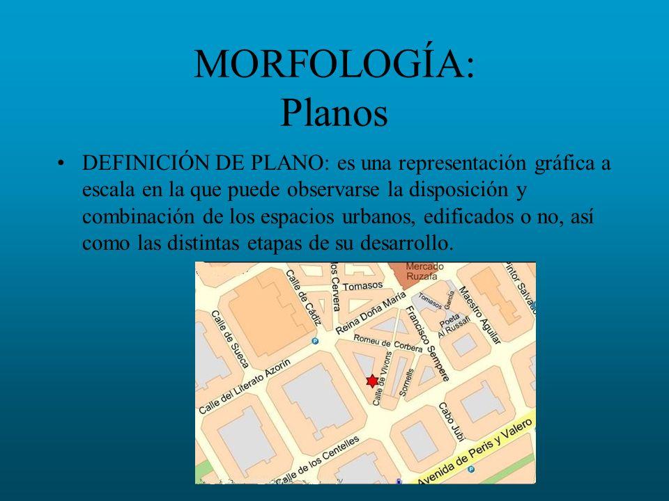 MORFOLOGÍA: Planos