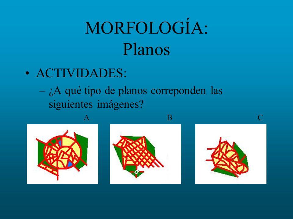 MORFOLOGÍA: Planos ACTIVIDADES: