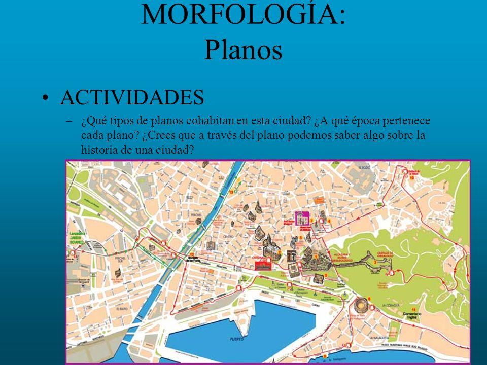 MORFOLOGÍA: Planos ACTIVIDADES