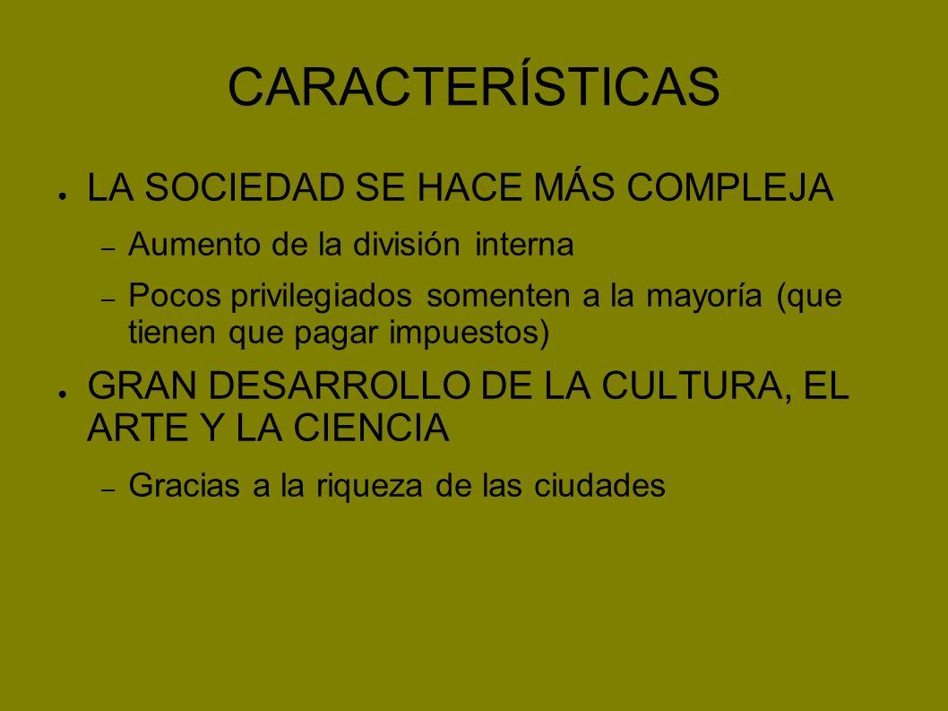 CARACTERÍSTICAS LA SOCIEDAD SE HACE MÁS COMPLEJA