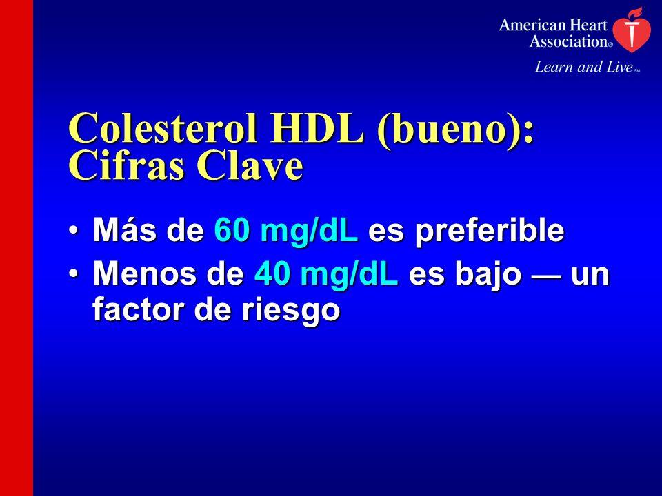 Colesterol HDL (bueno): Cifras Clave