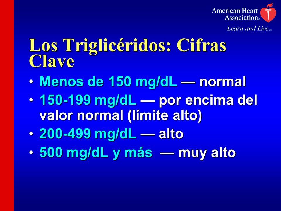 Los Triglicéridos: Cifras Clave