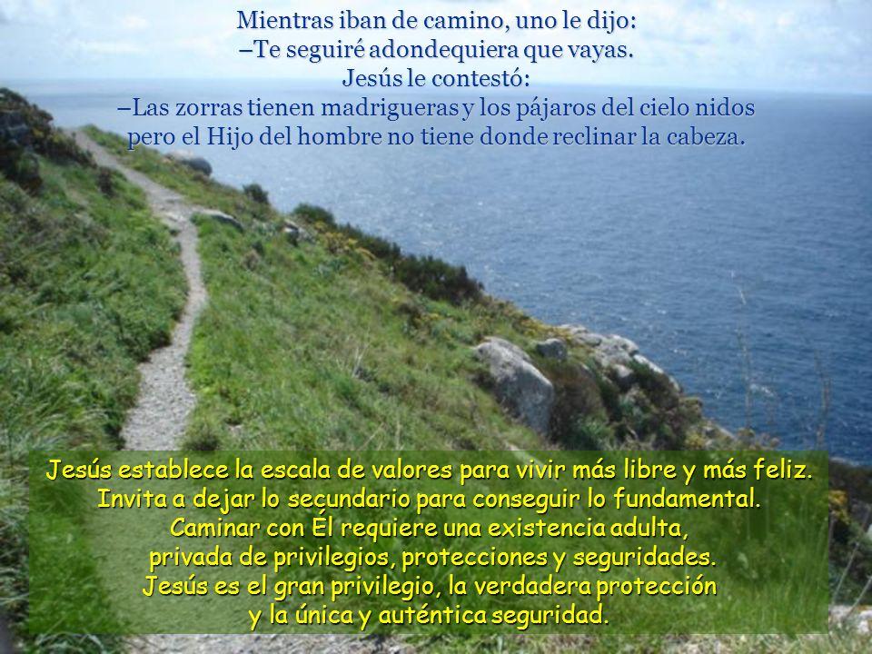 Mientras iban de camino, uno le dijo: –Te seguiré adondequiera que vayas. Jesús le contestó: –Las zorras tienen madrigueras y los pájaros del cielo nidos pero el Hijo del hombre no tiene donde reclinar la cabeza.