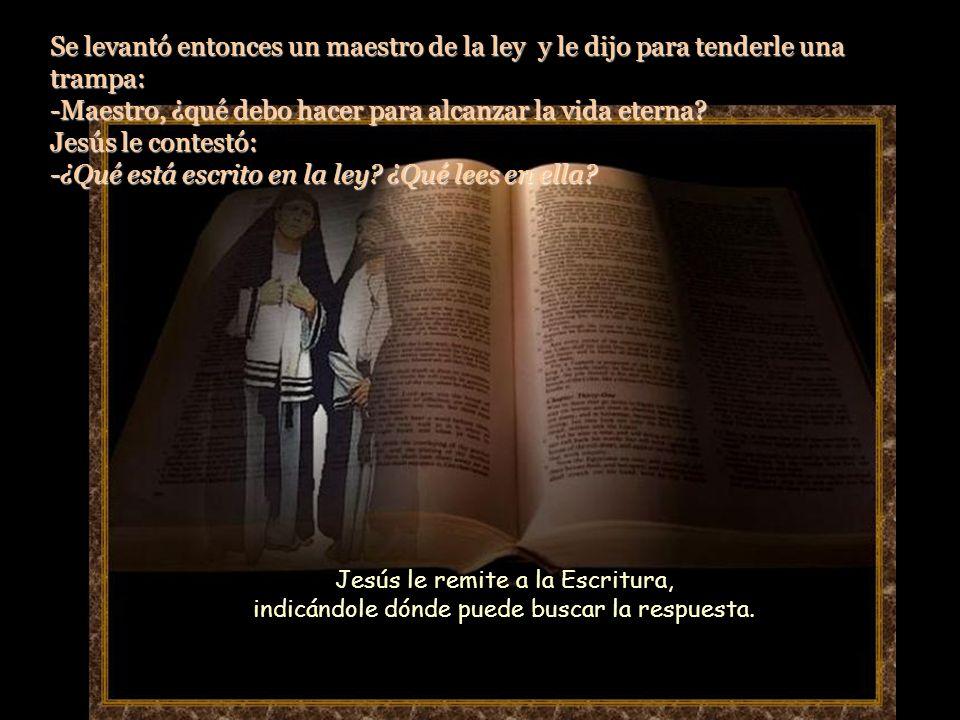 Se levantó entonces un maestro de la ley y le dijo para tenderle una trampa: -Maestro, ¿qué debo hacer para alcanzar la vida eterna Jesús le contestó: -¿Qué está escrito en la ley ¿Qué lees en ella