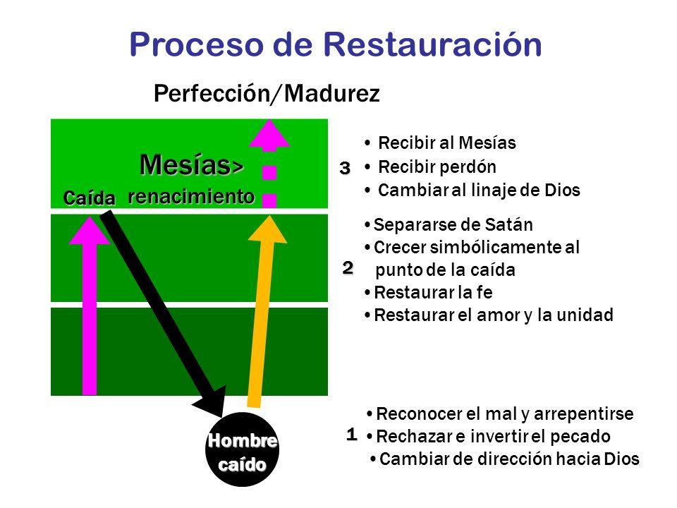 Proceso de Restauración