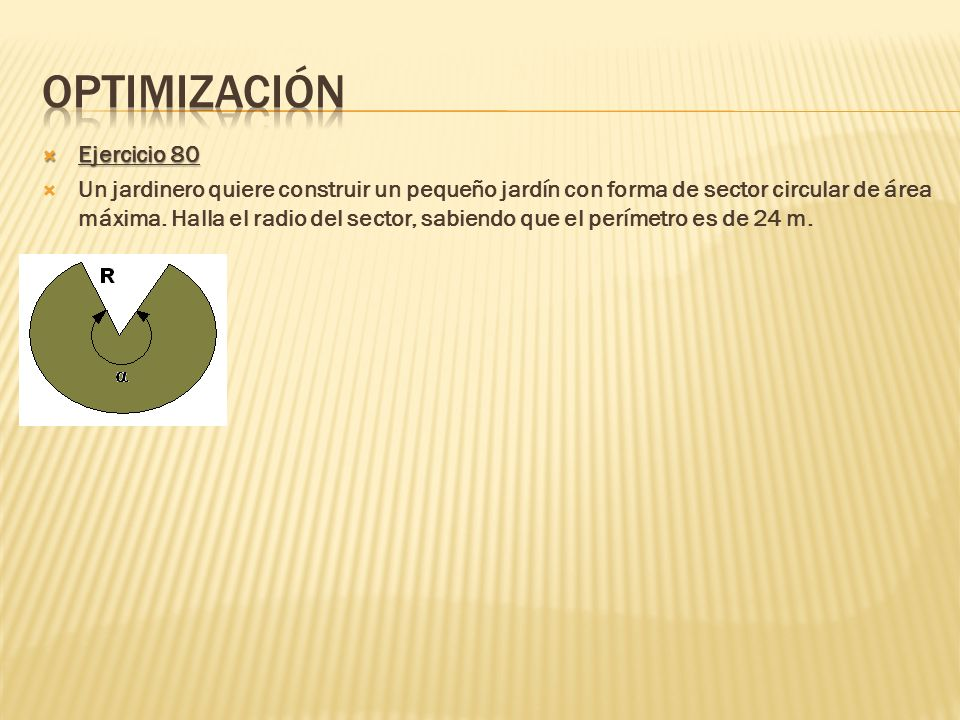 Optimización Ejercicio 80