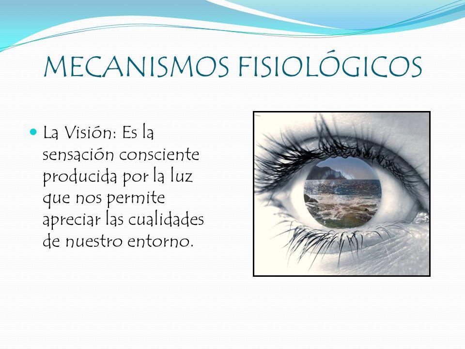 MECANISMOS FISIOLÓGICOS