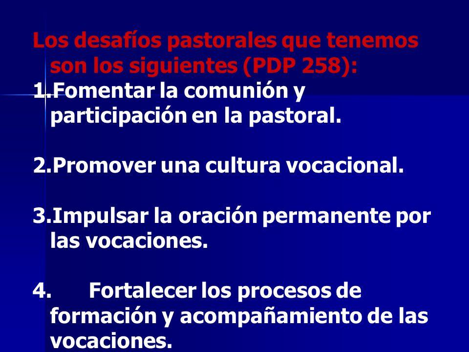 Los desafíos pastorales que tenemos son los siguientes (PDP 258):
