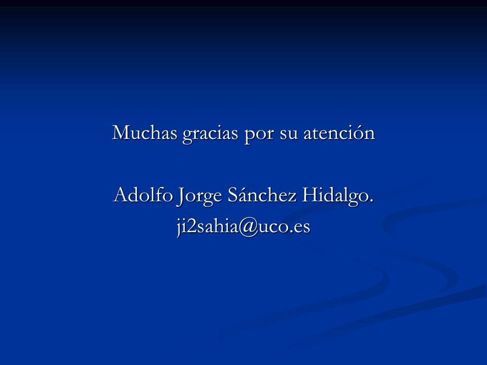 Muchas gracias por su atención Adolfo Jorge Sánchez Hidalgo.