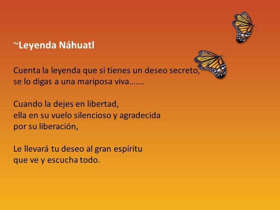 ~Leyenda Náhuatl Cuenta la leyenda que si tienes un deseo secreto, se lo digas a una mariposa viva…….