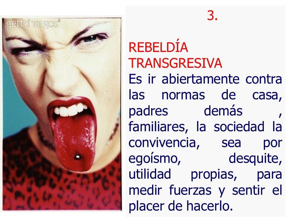 3. REBELDÍA TRANSGRESIVA.