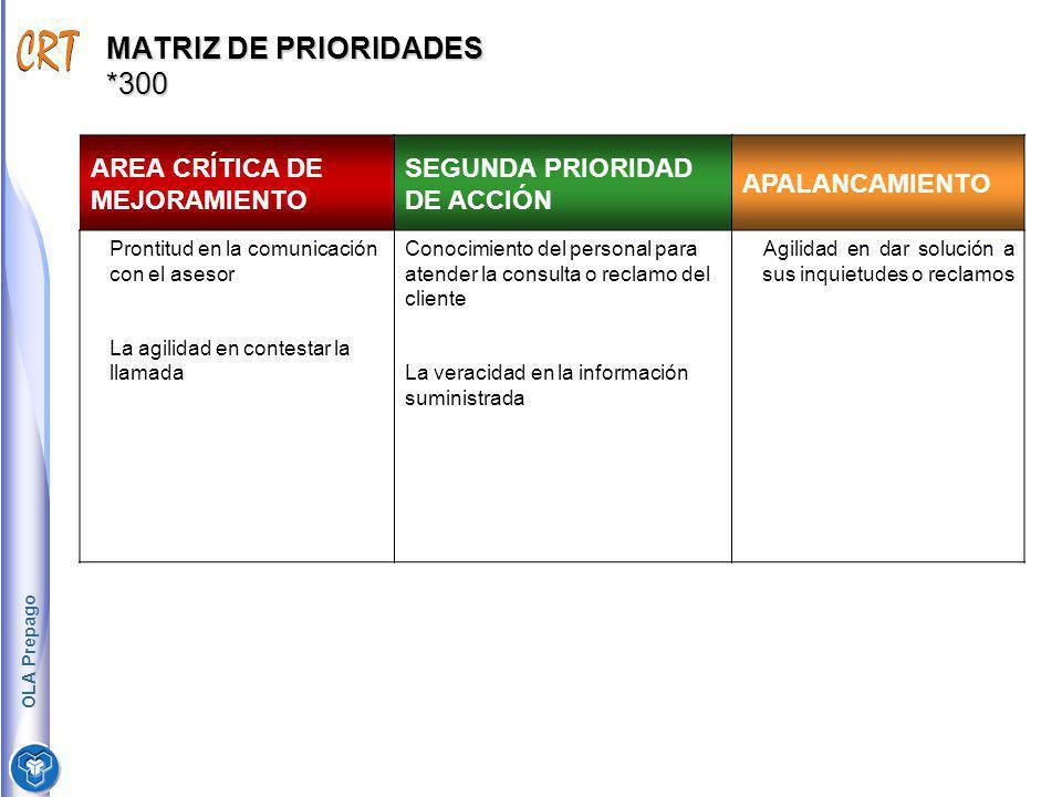 MATRIZ DE PRIORIDADES *300