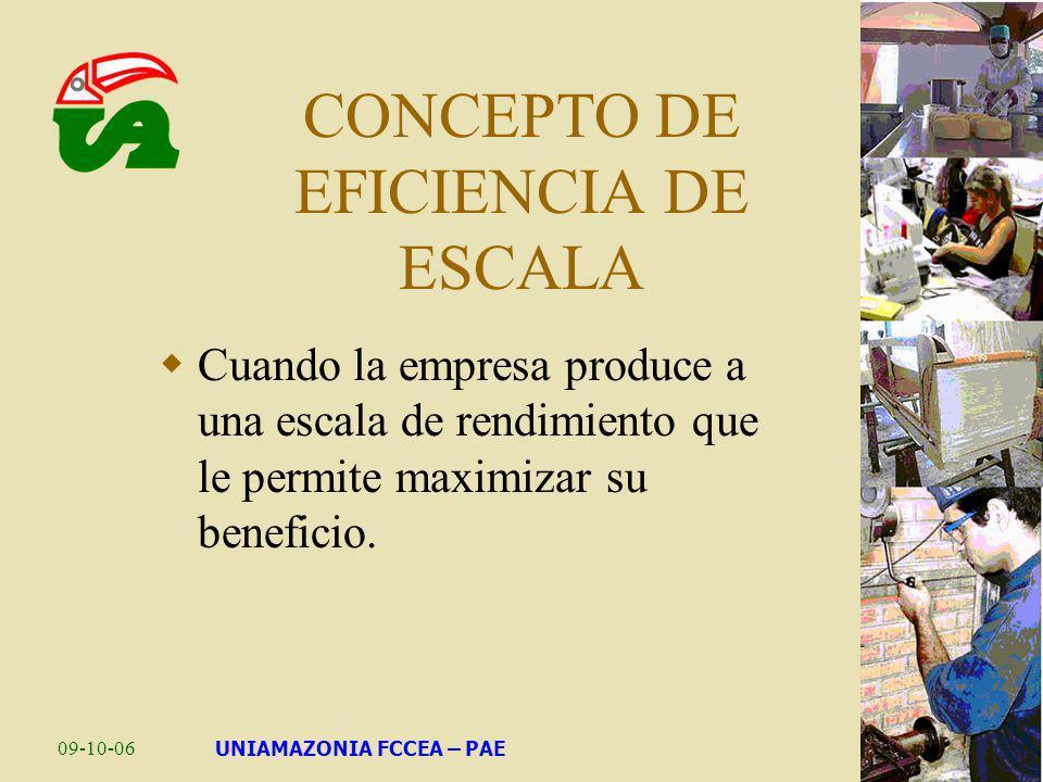 CONCEPTO DE EFICIENCIA DE ESCALA