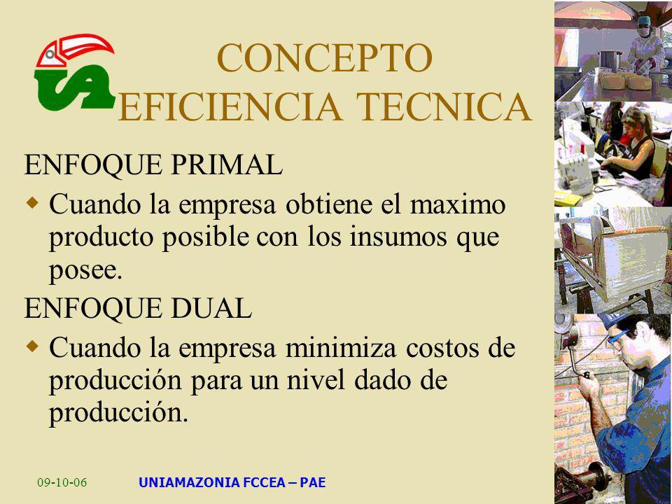 CONCEPTO EFICIENCIA TECNICA