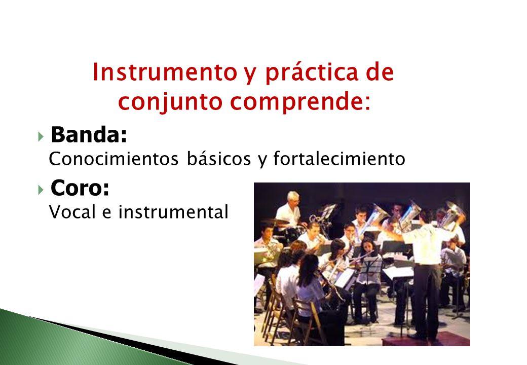 Instrumento y práctica de conjunto comprende: