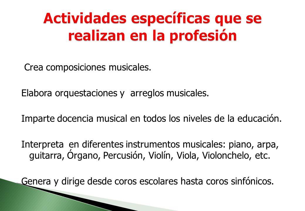Actividades específicas que se realizan en la profesión