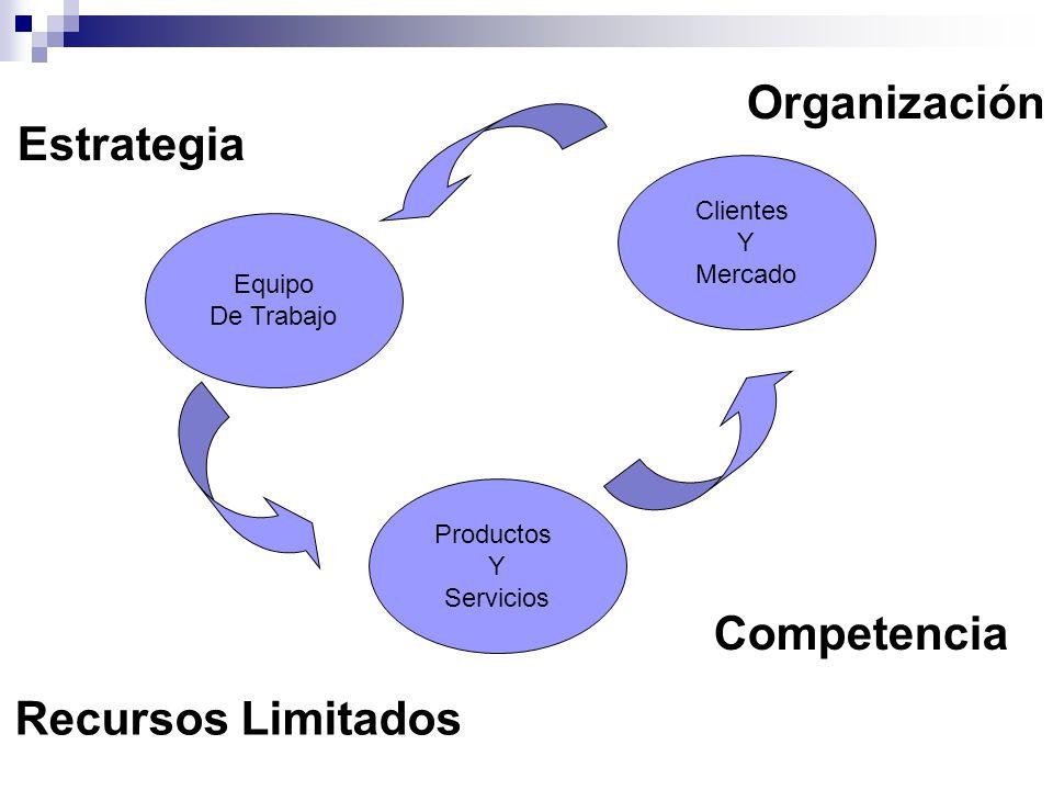 Organización Estrategia Competencia Recursos Limitados Clientes Y
