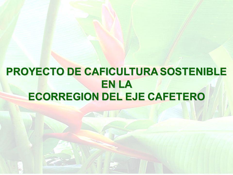 PROYECTO DE CAFICULTURA SOSTENIBLE ECORREGION DEL EJE CAFETERO