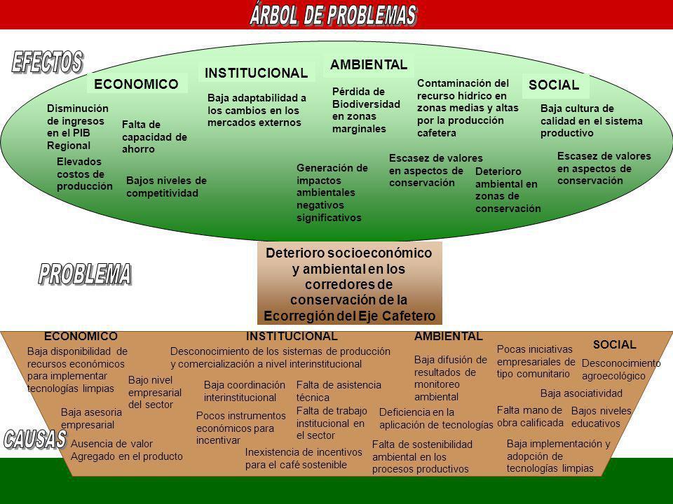 EFECTOS PROBLEMA AMBIENTAL INSTITUCIONAL ECONOMICO SOCIAL SOCIAL