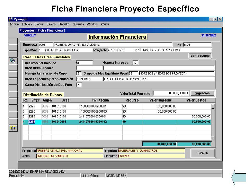 Ficha Financiera Proyecto Específico