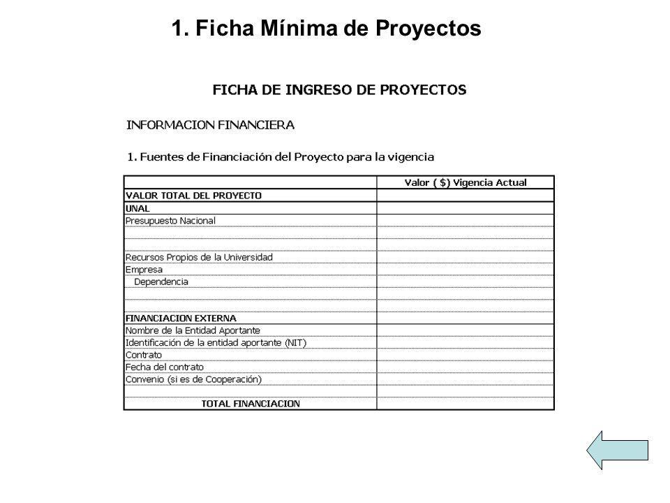 1. Ficha Mínima de Proyectos