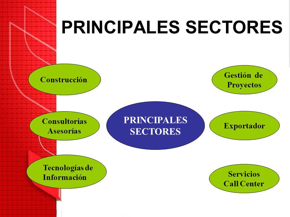PRINCIPALES SECTORES PRINCIPALES SECTORES Gestión de Proyectos