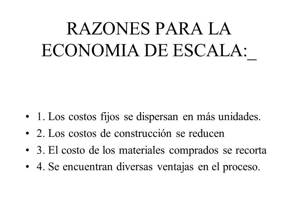 RAZONES PARA LA ECONOMIA DE ESCALA:_