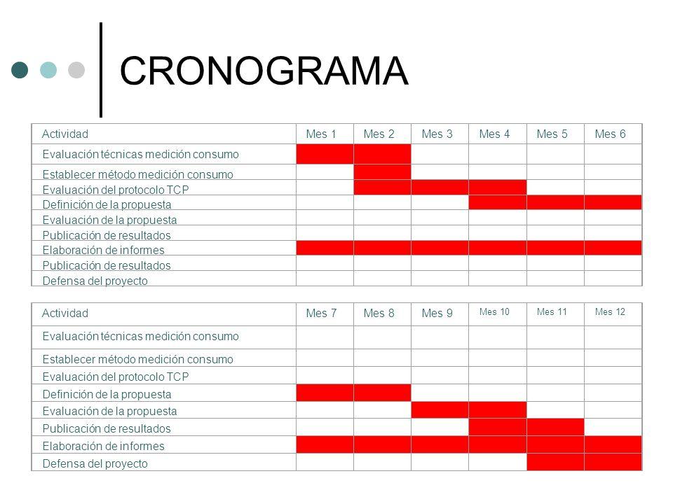 CRONOGRAMA Actividad Mes 1 Mes 2 Mes 3 Mes 4 Mes 5 Mes 6