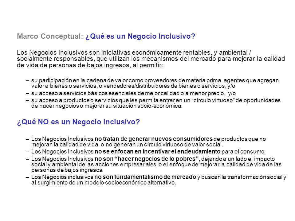 Marco Conceptual: ¿Qué es un Negocio Inclusivo