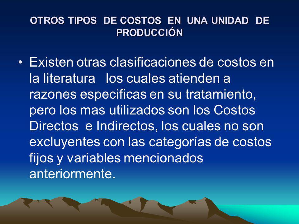 OTROS TIPOS DE COSTOS EN UNA UNIDAD DE PRODUCCIÓN