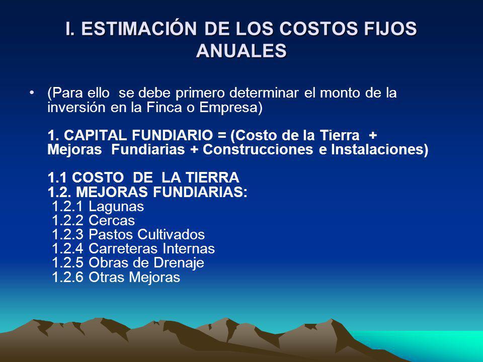 I. ESTIMACIÓN DE LOS COSTOS FIJOS ANUALES