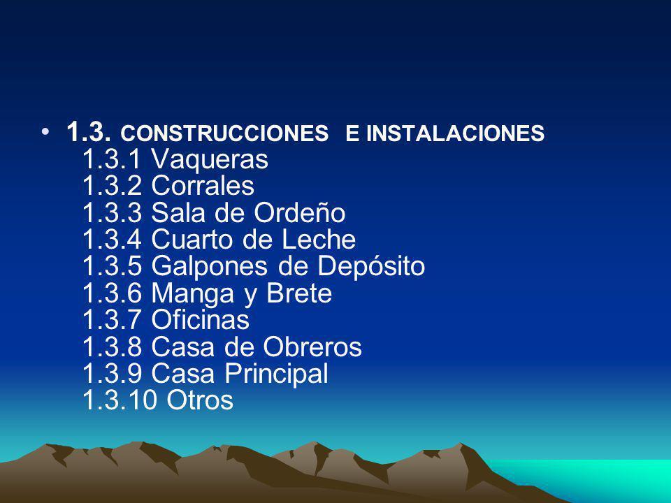 1. 3. CONSTRUCCIONES E INSTALACIONES 1. 3. 1 Vaqueras 1. 3