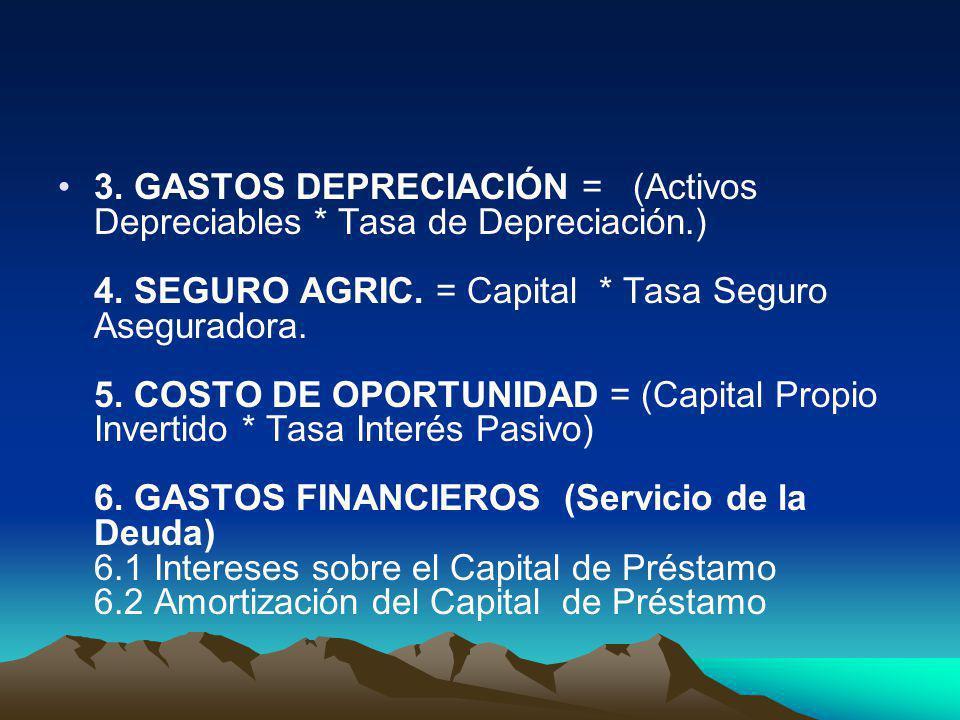 3. GASTOS DEPRECIACIÓN = (Activos Depreciables. Tasa de Depreciación